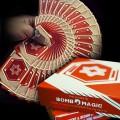 Vigor Playing Cards
